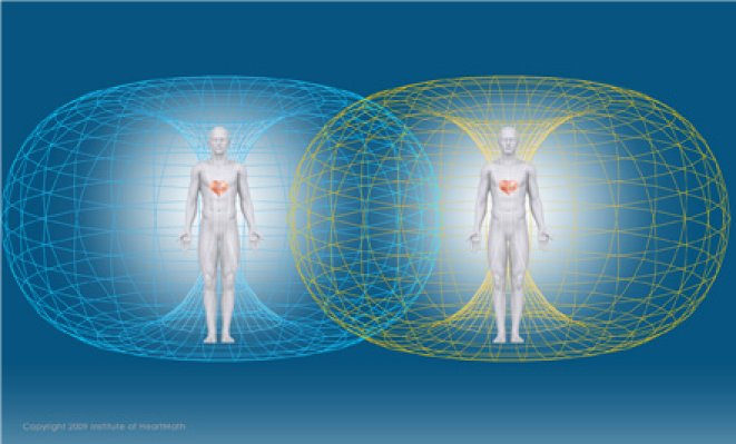 Image result for emf heart torso field