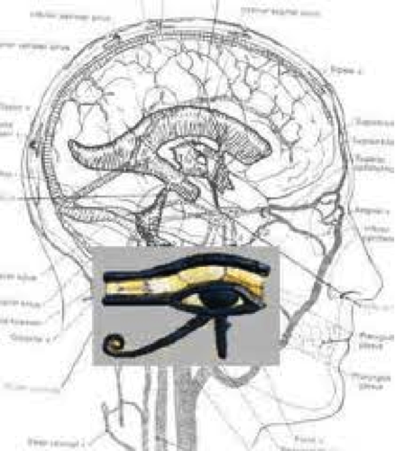 eye of horus third eye