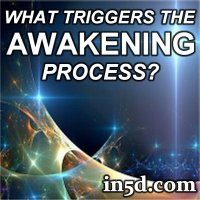 What Triggers the Awakening Process?