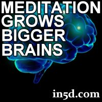 meditate, meditation, meditators, bigger brains, brains
