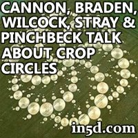 Cannon, Braden, Wilcock, Stray and Pinchbeck Talk About Crop Circles | in5d.com