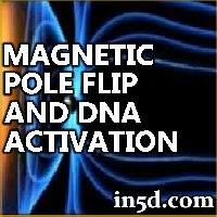 The Magnetic Pole Flip and DNA Activation