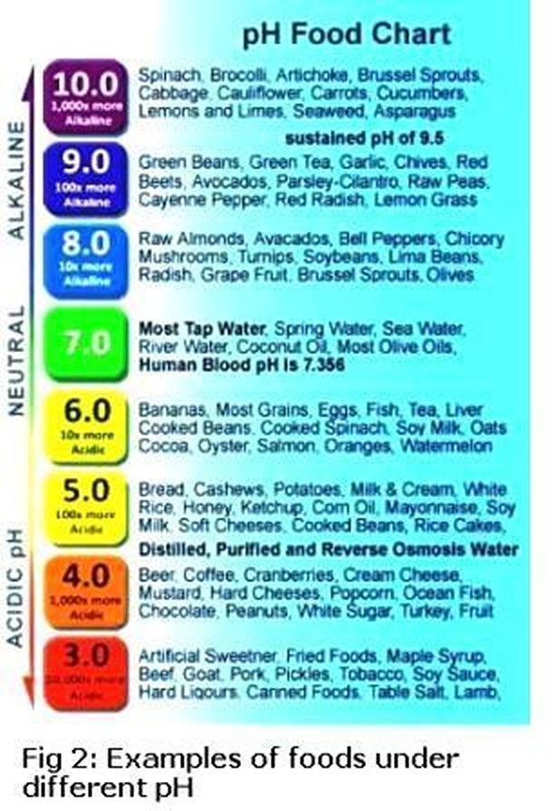 ph balance food chart pdf