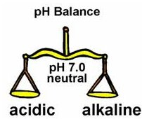 List of Alkaline Foods - The pH Balanced Diet | in5d.com