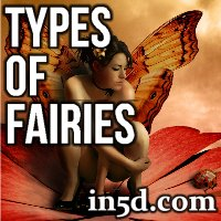 Types Of Fairies