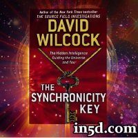 David Wilcock: The Synchronicity Key