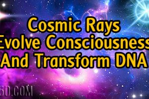 Do Cosmic Rays Evolve Consciousness And Transform DNA?