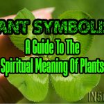 Plant Symbolism – A Guide To The Spiritual Meaning Of Plants – Q through Z