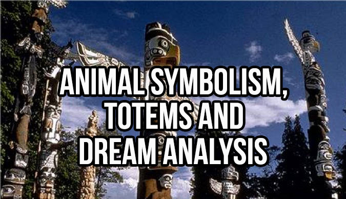 Animal Symbolism, Totems and Dream Analysis from A to Z