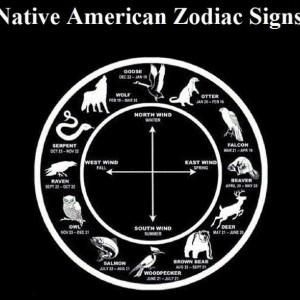Native American Animal Symbols Of The Zodiac In5d In5d