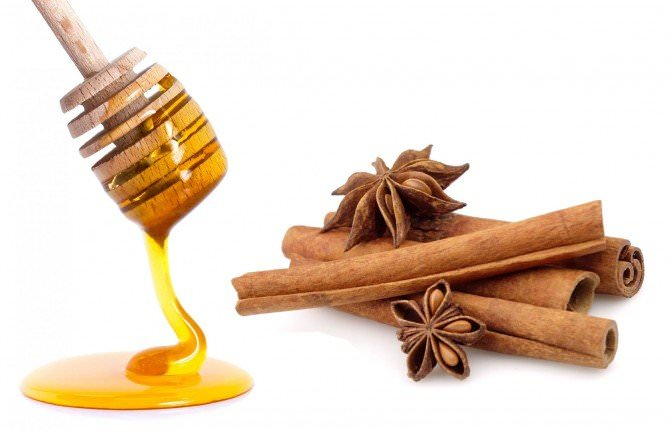 18 Amazing Health Benefits From Honey and Cinnamon