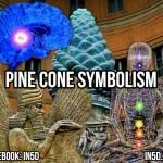 Pine Cone Symbolism
