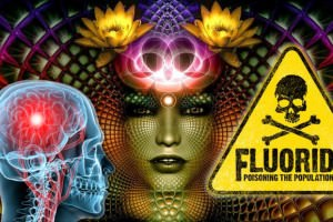 A Fluoride-Free Pineal Gland Is More Important Than Ever