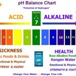 List of Alkaline Foods – The pH Balanced Diet