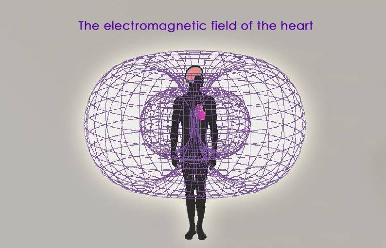 Image result for heart energy field