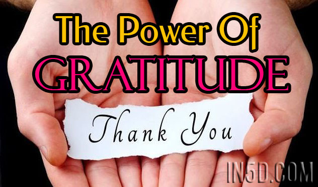 The Amazing Healing Benefits of Gratitude