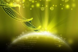 DNA Activation, Upgrade and Ascension