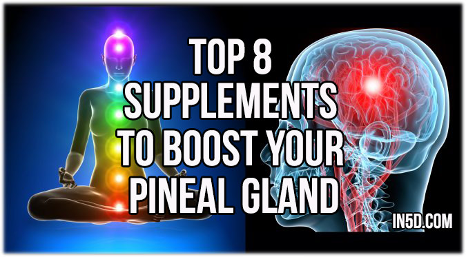 Top 8 Supplements To Boost Your Pineal Gland Function - In5D ...