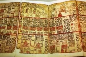 1,000 Mayan Codices Discovered in Museum Basement