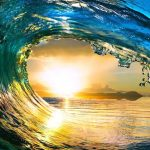 How to Surf the Waves of Change