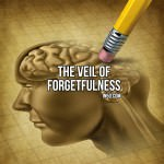The Veil Of Forgetfulness