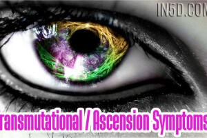 Transmutational / Ascension Symptoms