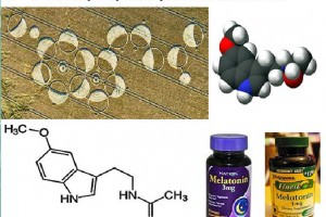Melatonin, the Pineal Gland, Your 3rd Eye, and Crop Circles