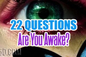 22 Questions: Are You Awake?