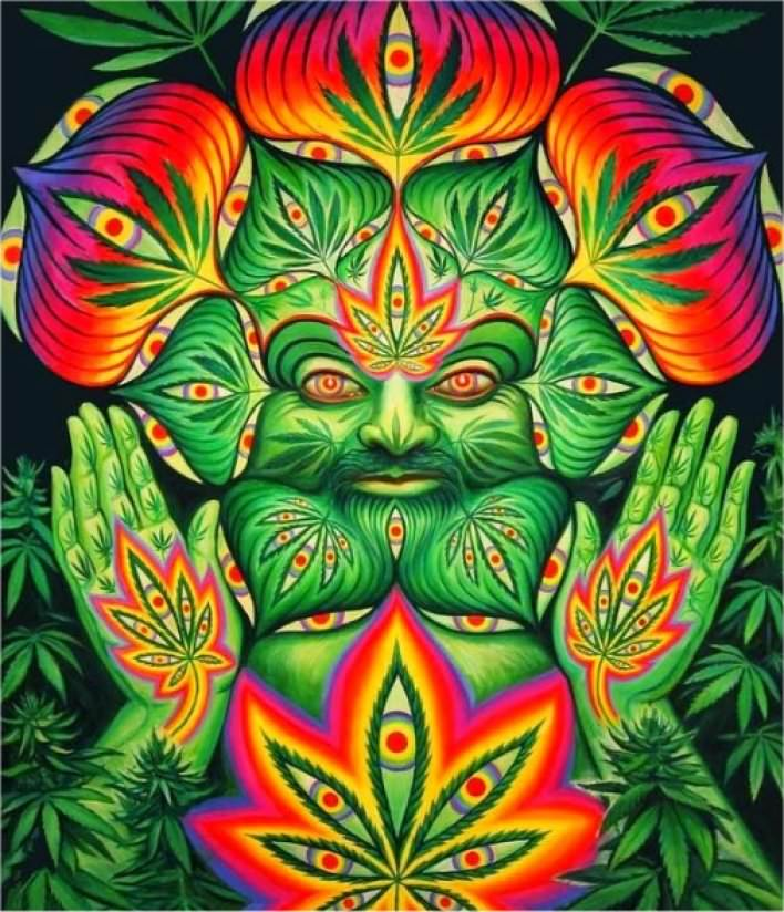 Cannabis And The Pineal Gland : Turn On The Third Eye
