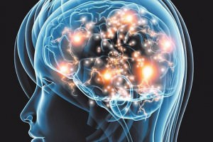 Meditation Grows Bigger Brains
