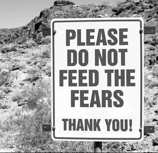 Please do not feed the fears.  Thank you! Facebook: In5d Website: //www.in5d.com/