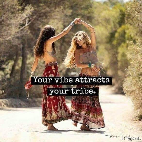 Your vibe attracts your tribe in5d.com