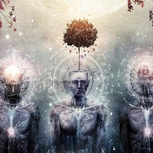 Pineal Gland Portal Of Higher Dimensions In5d In5d