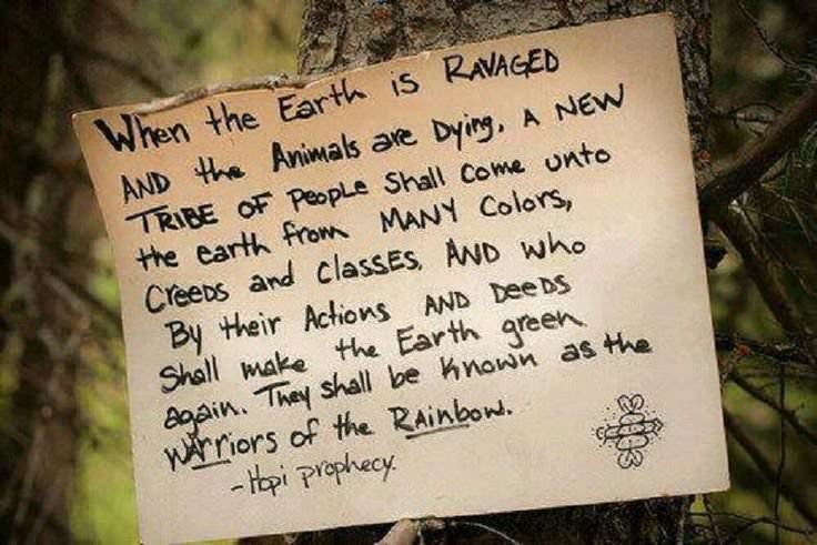When the earth is ravaged and the animals are dying, a new tribe of people shall come unto the earth from many colors, classes, creeds and who by their actions and deeds shall make the earth green again. They will be known as the warriors of the rainbow. ~ Hopi Prophecy Facebook: In5 Website: //www.in5d.com/