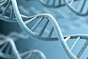 97 Percent of Our DNA Has A Higher Purpose And Is Not 'Junk' As Labeled By Scientists