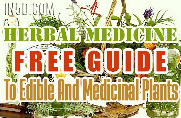 FREE GUIDE To Edible And Medicinal Plants - Herbal Medicine