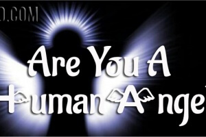 Are You A Human Angel?