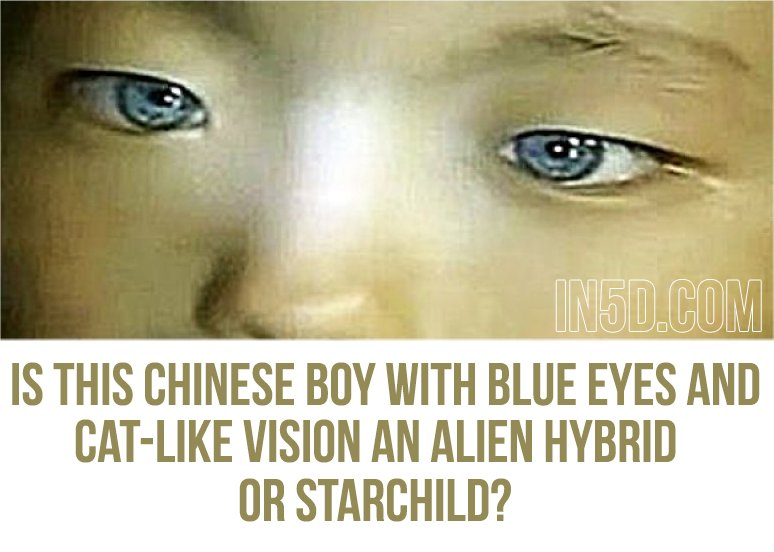 Is This Chinese Boy With Blue Eyes And Cat-Like Vision An Alien Hybrid Or Starchild?  in5d in 5d in5d.com www.in5d.com http://in5d.com/ body mind soul spirit BodyMindSoulSpirit.com http://bodymindsoulspirit.com/