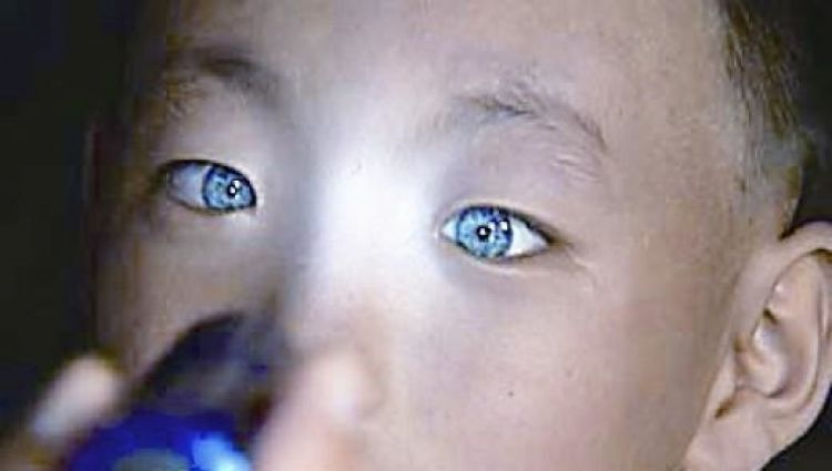 Is This Chinese Boy With Blue Eyes And Cat-Like Vision An Alien Hybrid Or Starchild? in5d in 5d in5d.com www.in5d.com //in5d.com/%20body%20mind%20soul%20spirit%20BodyMindSoulSpirit.com%20http://bodymindsoulspirit.com/