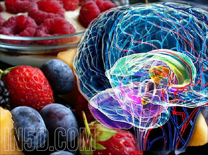 Decalcify The Pineal Gland With Alkaline Foods in5d in 5d in5d.com www.in5d.com //in5d.com/%20body%20mind%20soul%20spirit%20BodyMindSoulSpirit.com%20http://bodymindsoulspirit.com/