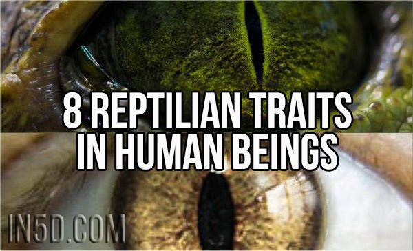 8 Reptilian Traits In Human Beings