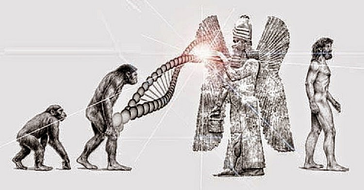 "A Look Into The Origins Of Mankind: Does This Explain Evolution's ""Missing Link?"" in5d in 5d in5d.com www.in5d.com //in5d.com/%20body%20mind%20soul%20spirit%20BodyMindSoulSpirit.com%20http://bodymindsoulspirit.com/"