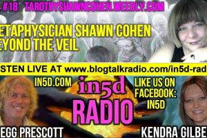 In5D Radio Metaphysician Shawn Cohen Beyond The Veil Ep. 18