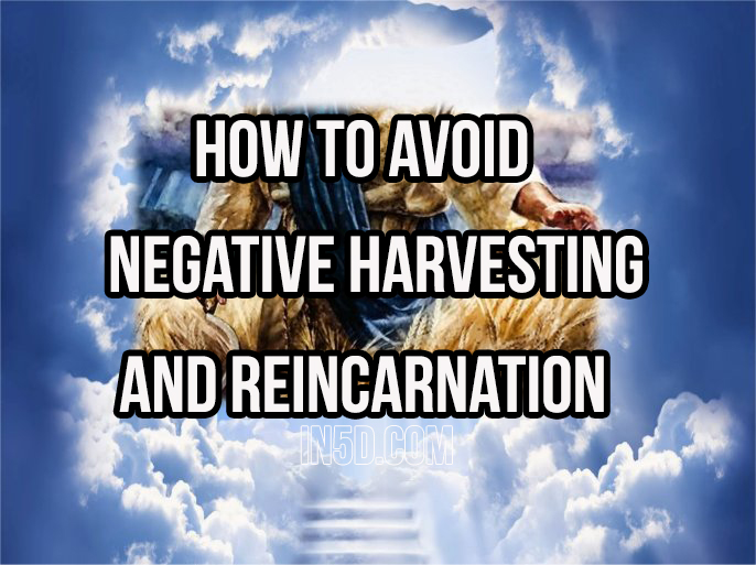 How To Avoid Negative Harvesting And Reincarnation
