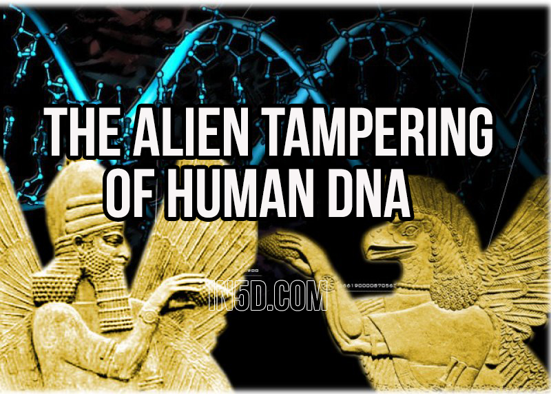 The Alien Tampering Of Human DNA in5d in 5d in5d.com www.in5d.com http://in5d.com/ body mind soul spirit BodyMindSoulSpirit.com http://bodymindsoulspirit.com/