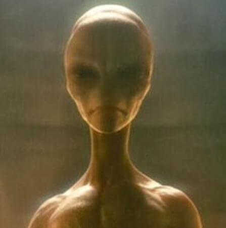 5 Alien Species Already Walking Amongst Us