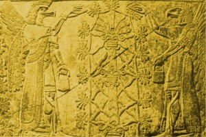 The Anunnaki MUST Return To Fix Their Creation That Has Gone Astray