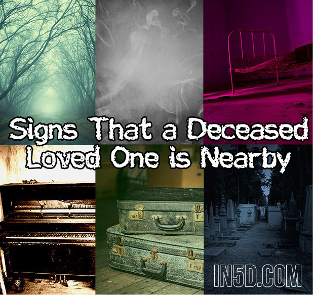 When the Dead Come Calling – Signs That a Deceased Loved One