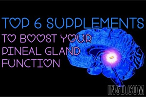 Top 6 Supplements To Boost Your Pineal Gland Function