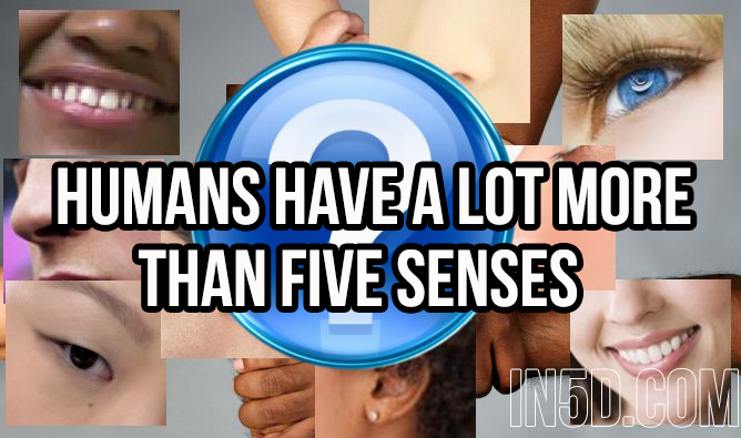 Humans Have A Lot More Than Five Senses